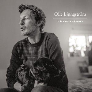 Olle Ljungstrom アーティスト写真