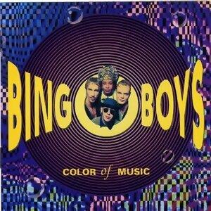 Bingoboys 歌手頭像