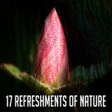 Nature's Spa Music (香草芬多精)
