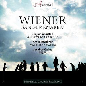 Wiener Sangerknaben 歌手頭像