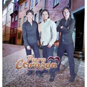 Grupo Puro Corazon 歌手頭像