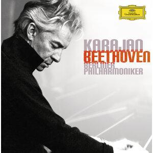 Herbert Von Karajan/Berliner Philharmoniker 歌手頭像