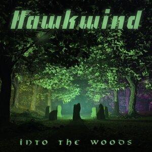 Hawkwind 歌手頭像