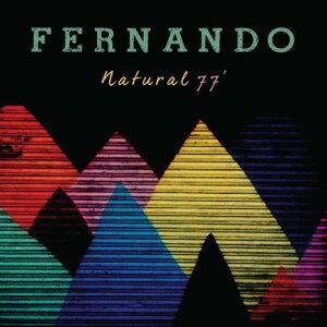 Fernando 歌手頭像