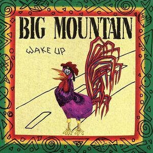 Big Mountain 歌手頭像