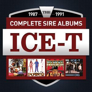 ICE-T アーティスト写真