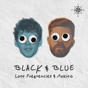 Lost Frequencies, Mokita