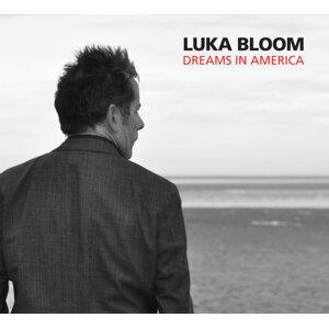 Luka Bloom 歌手頭像