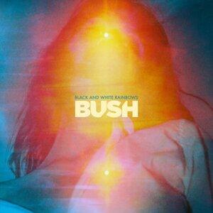 Bush (布希合唱團) 歌手頭像