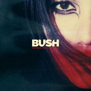 Bush (布希合唱團)