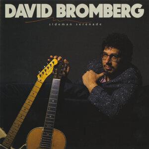 David Bromberg 歌手頭像