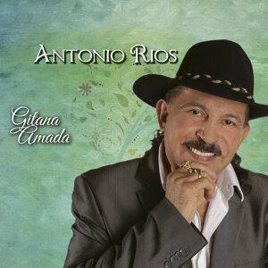 Antonio Rios 歌手頭像