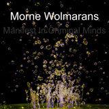 Morne Wolmarans