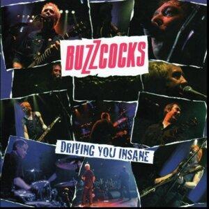 The Buzzcocks 歌手頭像