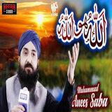 Muhammad Anees Saba