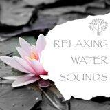 Natural Spirit & Ocean Sounds