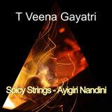 T Veena Gayatri