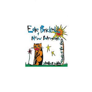 Edie Brickell New Bohemians アーティスト写真