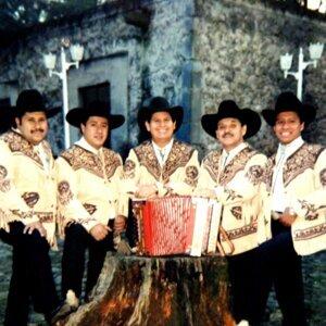 Los Broncos de Reynosa 歌手頭像