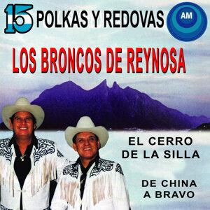 Los Broncos de Reynosa アーティスト写真