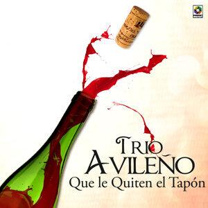 Trio Avileno 歌手頭像