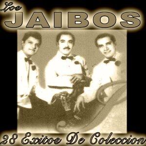 Los Jaibos 歌手頭像