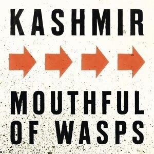Kashmir 歌手頭像