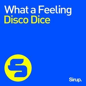 Disco Dice 歌手頭像