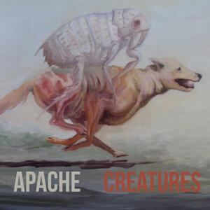 Apache 歌手頭像