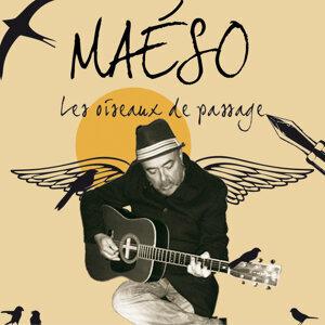 Maeso 歌手頭像