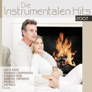 Die instrumentalen Hits 2007 歌手頭像