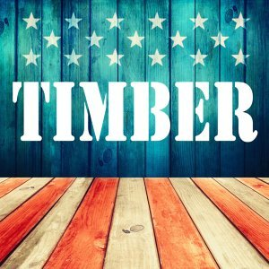 Timber 歌手頭像
