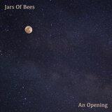 Jars Of Bees