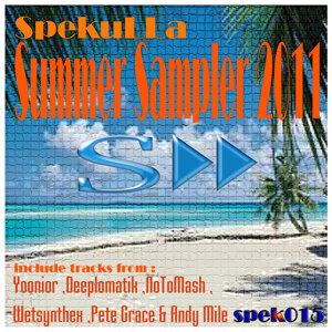 Summer Sampler 2011 歌手頭像