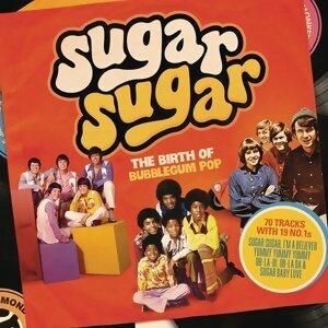 Sugar Sugar 歌手頭像
