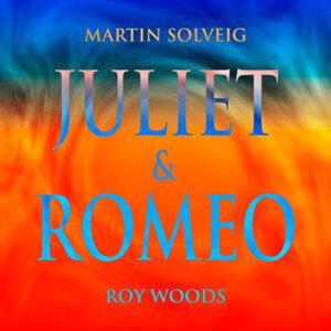 Martin Solveig, Roy Woods