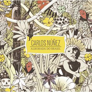 Carlos Nunez (卡洛斯‧努涅茲) 歌手頭像