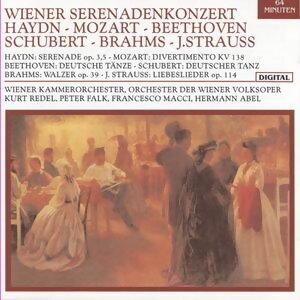 Haydn - Mozart - Beethoven - Schubert - Brahms - J. StrauB 歌手頭像