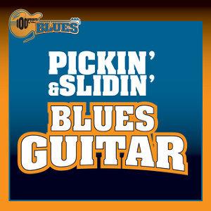 Pickin' & Slidin' Blues Guitar アーティスト写真