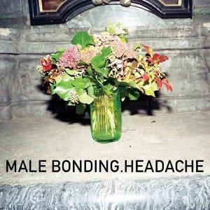 Male Bonding 歌手頭像
