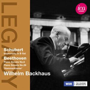Wilhelm Backhaus 歌手頭像