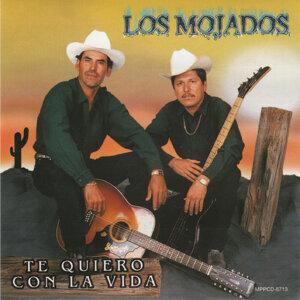 Los Mojados 歌手頭像