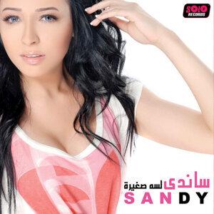 Sandy 歌手頭像