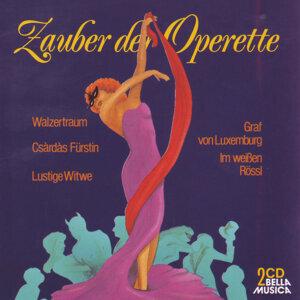 Orchester der Wiener Volksoper, Franz Bauer-Theussl 歌手頭像