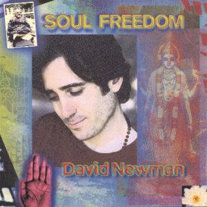 David Newman 歌手頭像