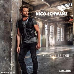 Nico Schwanz 歌手頭像