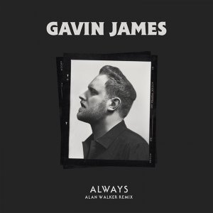 Gavin James, Alan Walker Artist photo