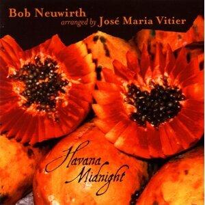 Bob Neuwirth 歌手頭像