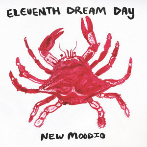 Eleventh Dream Day