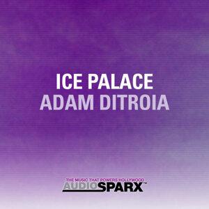 Adam DiTroia 歌手頭像